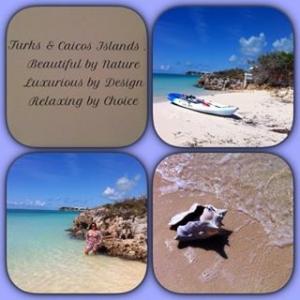 Esse é o verdadeiro paraíso ! Turks & Caicos (Sapodilla Bay) #turksandcaicos #praias #sapodillabay