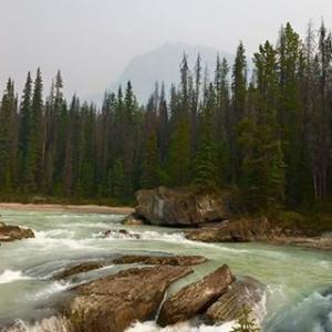 Parque Nacional Canadense!  #canada #adoroviajarcomanovatour #gruponovatour #naturalbridge #parcnati